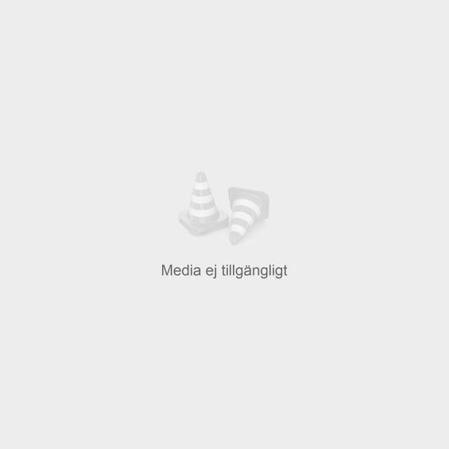 Kjell Vegard Østhus