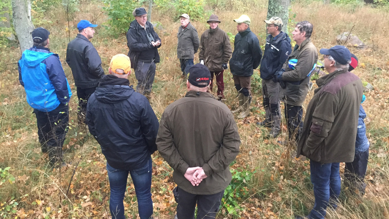 Ett tiotal män står i en ring ute i skogen och lyssnar på skogsekolog Gustaf Aulén. Bruna löv på marken.