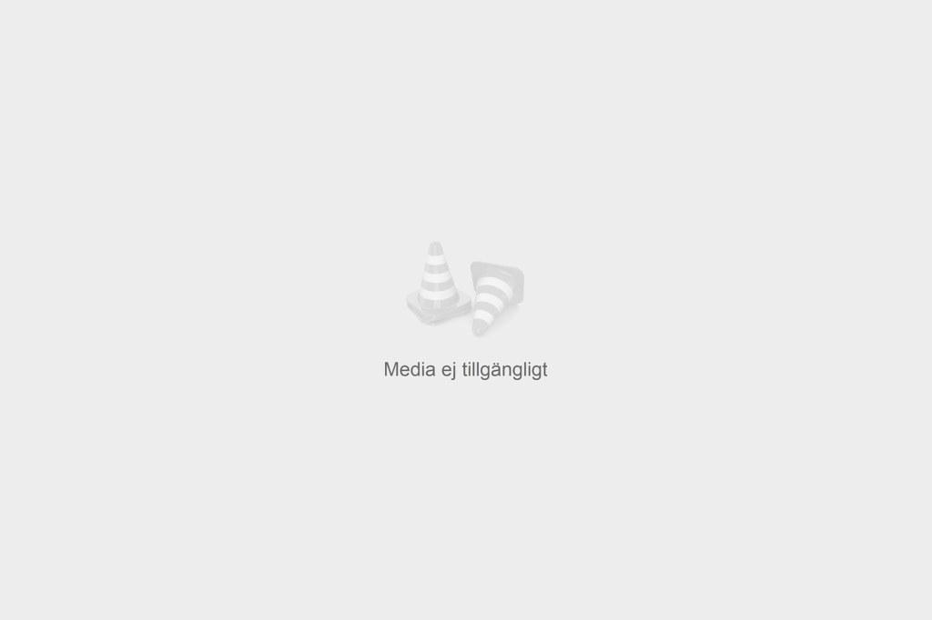 Porträtt - Gustav Tibblin