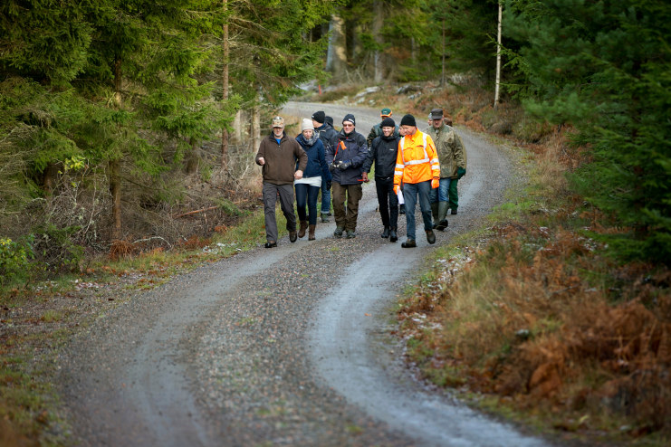 Timber expertise meets forest stewardship